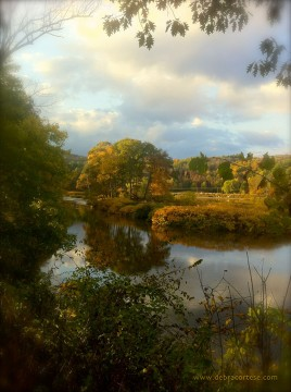 Golden Glow Delaware River Narrowsburg NY