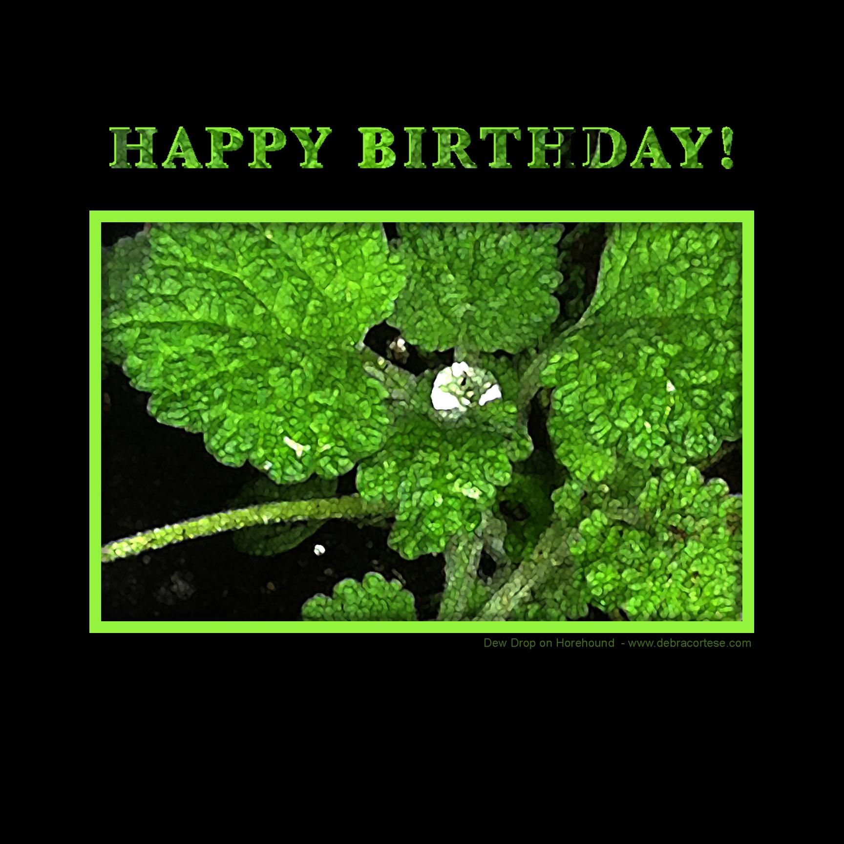 Diamond Horehound Happy Birthday image by Debra Cortese ©2016