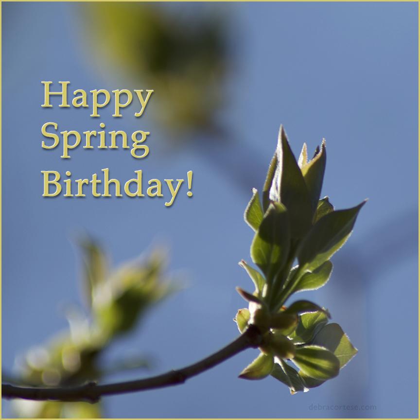 Lilac Buds Happy Spring Birthday image by Debra Cortese ©2017